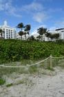 Bezien vanaf het strand