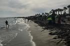 Strand playa bara