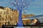 De verlichte boom .
