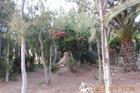 De parken in Costa Calma