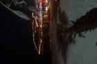 vanaf Flamingo Beach